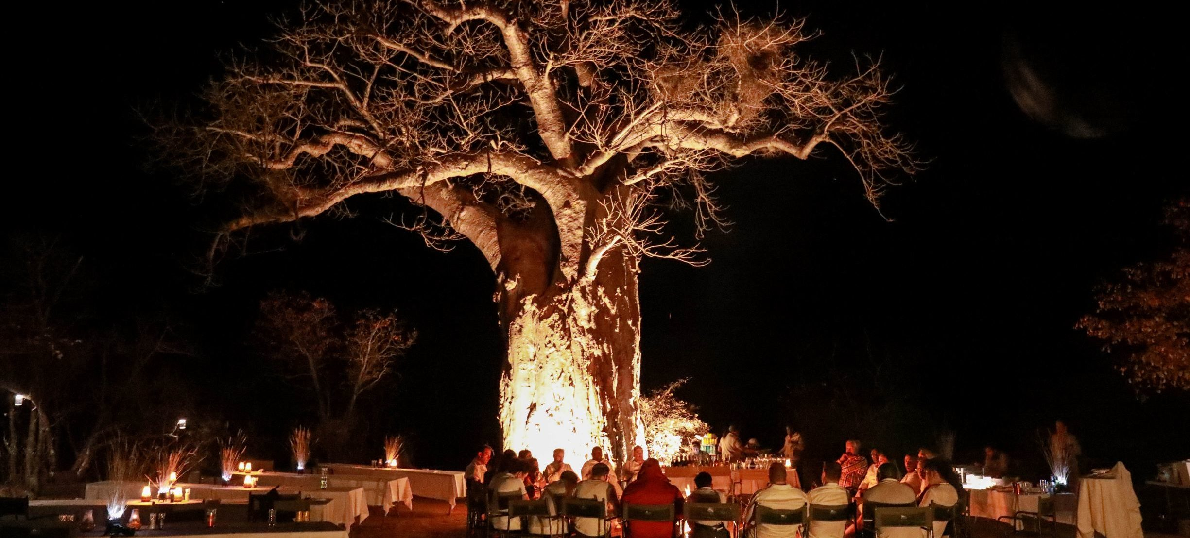 baum-lagerfeuer-abend-fire-africa-diamant-reise-afrika